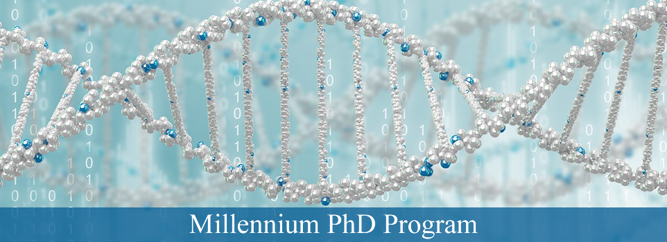 Millennium PhD (MPP) Program