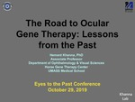The Road to Ocular Gene Therapy: Lessons from the Past